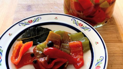 Preserving Vegetable – Capsicum Pickle
