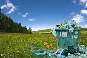 We have a Food Waste Situation – Sustainable Living Choices